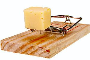 cheese scam 300x200