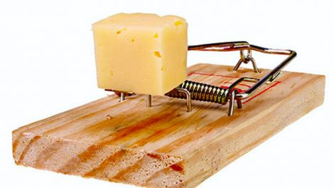 cheese scam 470x264