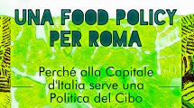food policy roma 215x120