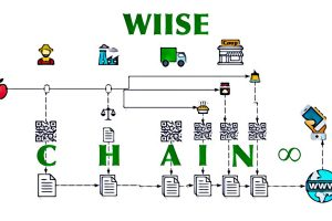 wiise chain 300x200