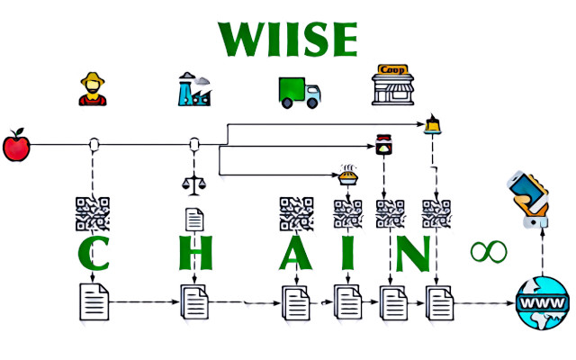 wiise chain
