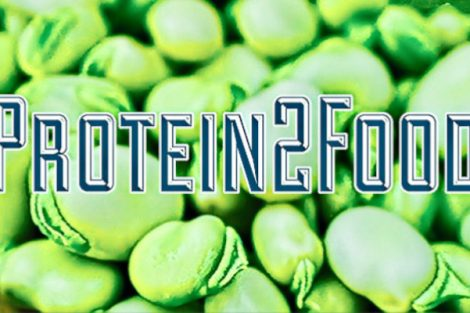 protein2food 470x313